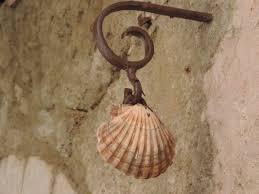 camino shell-2